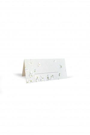 Stalo kortelių rinkinys (10 vnt.)
